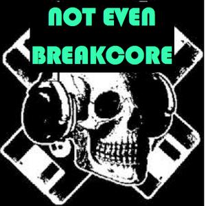 Not Even Breakcore