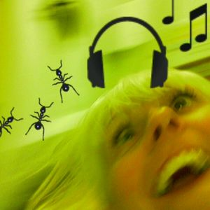 DJ Donna Dolittle's Eve Of The Revolution Mix