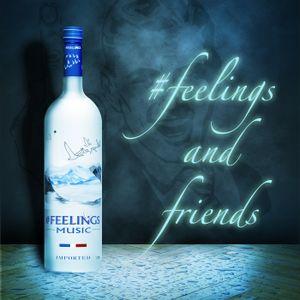 #feelings and friends Episode 23: Spring Breakers - 18/08/14