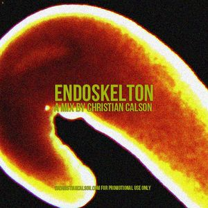 Endoskeleton (mixtape)- Dj Christian Calson