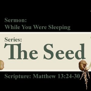 The Seed Part 3: While You Were Sleeping by Pastor Jerry