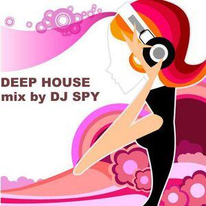 Chris T. (aka DJ SPY) - Deep House Noe 2012