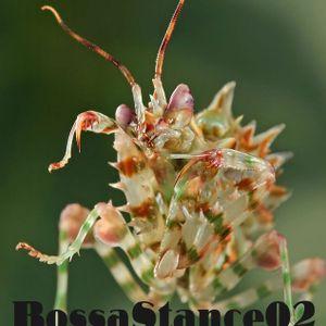 Bossastance02