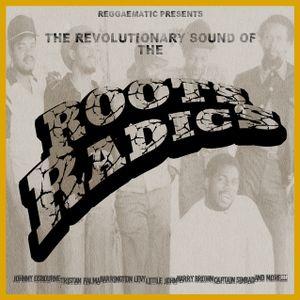 The Revolutionary  Sound Of The Roots Radics