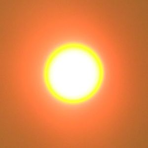 The Sun through The Night