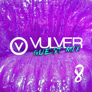 Vulver Guest Mix 8 | Mark Funk