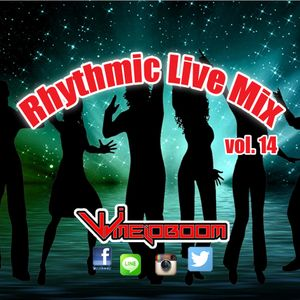 Rhythmic Live Mix Vol. 14 (House/Chill Out)