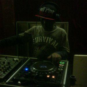 DJ Flex's Funky/Bass Mix