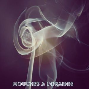 Mouches a l'orange - Jupiter555-SoftJimmyMachine - part 2 - live 2010