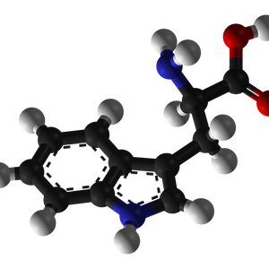 Dr__Squid - Set are Tryptophanita 112012