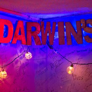 An Interview with Lyndsey Wine of Darwins Burgers and Blues