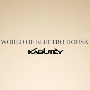 World of Electro House #27