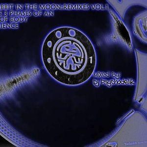 Psychodelik - Psycho On The Moon