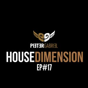 PIETER GABRIEL HOUSEDIMENSION EP#17