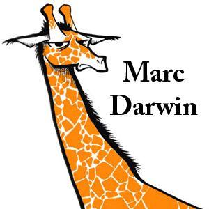 Marc Darwin on Belfield FM 08-11-12