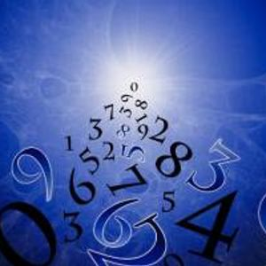 The Evolution of Numbers