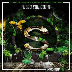 Dj Snake x Sean Paul x Anitta vs Charlotte Devaney x Tanya L - Fuego You Got It (Da Sylva mashup)
