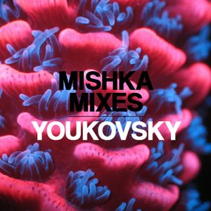 Youkovskiy — Mishka mix