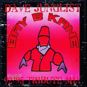 Bay B Kane 92-95 Tribute Mix