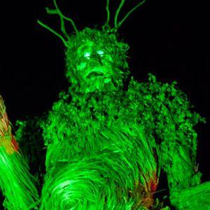 Sensible Dancehall at Green Man Festival