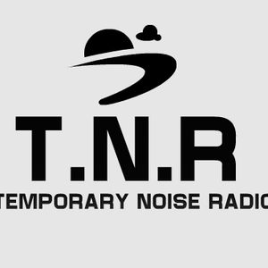 Temporary Noise Radio's Unsigned & Independent Artist Show 28.10.2013