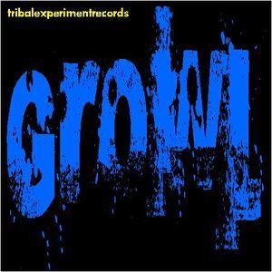 DJ GROWL - Underground