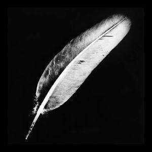 """Mirko Zurko @ """"A white feather flies in my soul"""""""