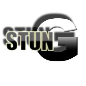 StunG - Techno Audience