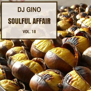 Soulful Affair Vol. 18