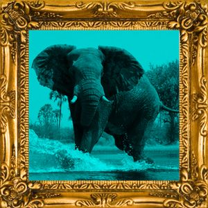 [MIXTAPE] Marcello Giordani - Deep Safari