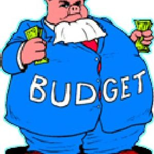 Budget to the People
