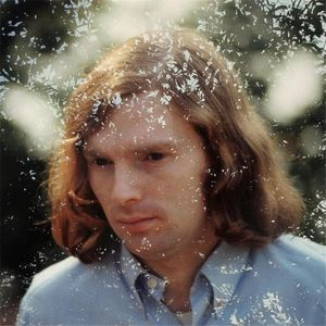 Van Morrison Collection Vol. 1 'Here Comes the Knight'