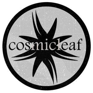 SIDE LINER | Cosmicleaf Records Series Vol.19