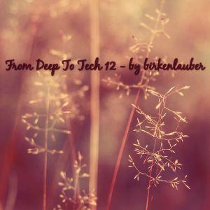 From Deep To Tech Vol. 12 - by birkenlauber