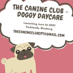 One FM 94.0 Drive Time - Rebecca Hart and Duan Baker Interviews Kemo Correia on The Canine Club !