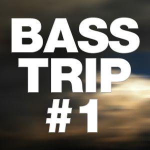 Bass-Trip #1 2011 MIX