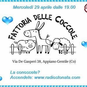 Canzoni Stonate - 29.04.2015