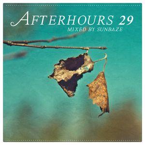 Afterhours 29