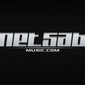 Netsab - February 2013