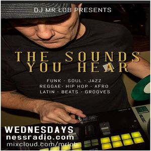 The Sounds You Hear #75 with Special Guest Dj JS