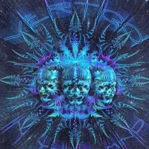 Critical Mitch - Forgotten Dimensions Progressive/Psy Mix