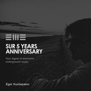 SUR 5Y anniversary: Egor Kuchepatov