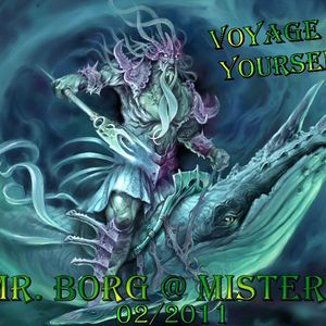 Mr. Borg´s Mistery Voyage to your self