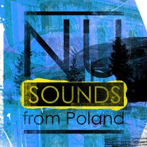 Nu Sounds from Poland (mix for/from Noecho compilation)