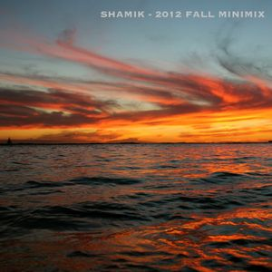 Shamik - 2012 Fall Minimix