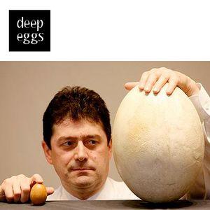 Deep Eggs