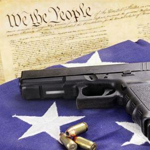 Episode 6.5: Gun Control Pt. 2