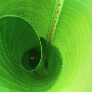 Chlorophyll Teil 2