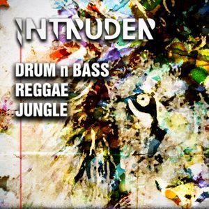 Drum 'n' Bass Reggae Jungle Set | August '12