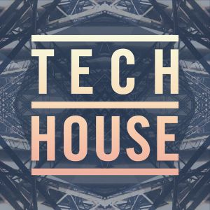 Tech-House Verano 2017 Set Mix By Dj Pulpo In The Mix